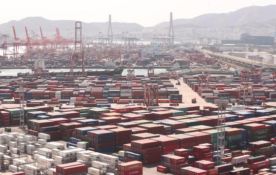 지난 4월 21일 부산 남구 신선대부두에 컨테이너가 쌓여 있는 모습. 뉴스1
