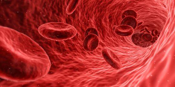 생강의 또 다른 작용은 혈액을 맑게 해서 혈액순환을 돕는 것이다.[사진 pexels]