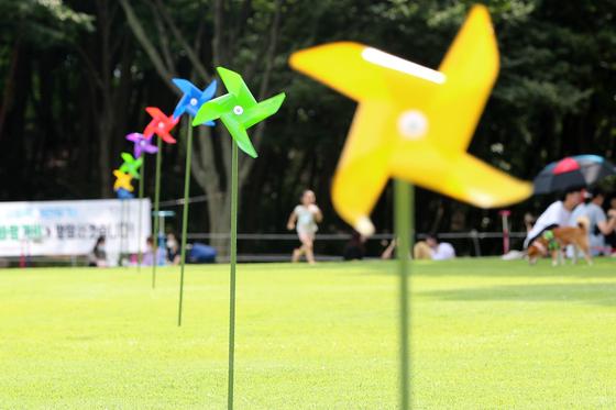 5일 휴일을 맞아 대구 달서구 두류공원 코오롱야외음악당 잔디광장을 찾은 시민들이 휴식하고 있다. 뉴스1