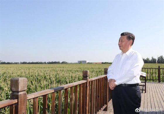 이달에만 15번 총서기 불렀다···시진핑=독재자 판 짜는 美