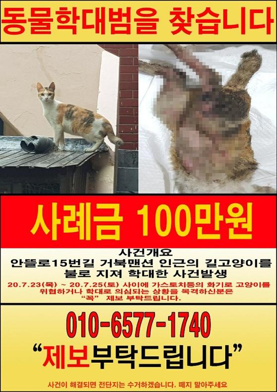 독자제공=연합뉴스