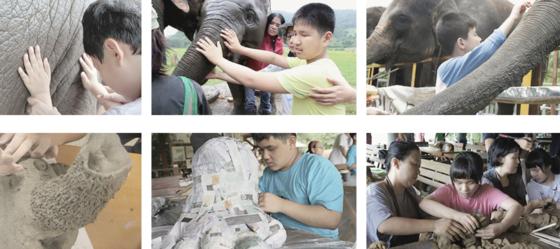 우리들의 눈에서 진행하고 있는 '코끼리 만지기'프로젝트의 장면들. [사진 우리들의 눈 홈페이지]