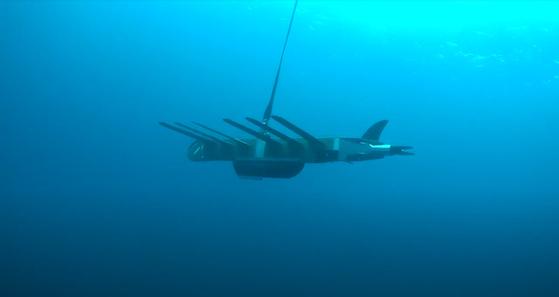 지난달 21일 제주 화순 앞바다에 투입된 저염분수 측정용 웨이브글라이더. [사진 제주도해양수산연구원]
