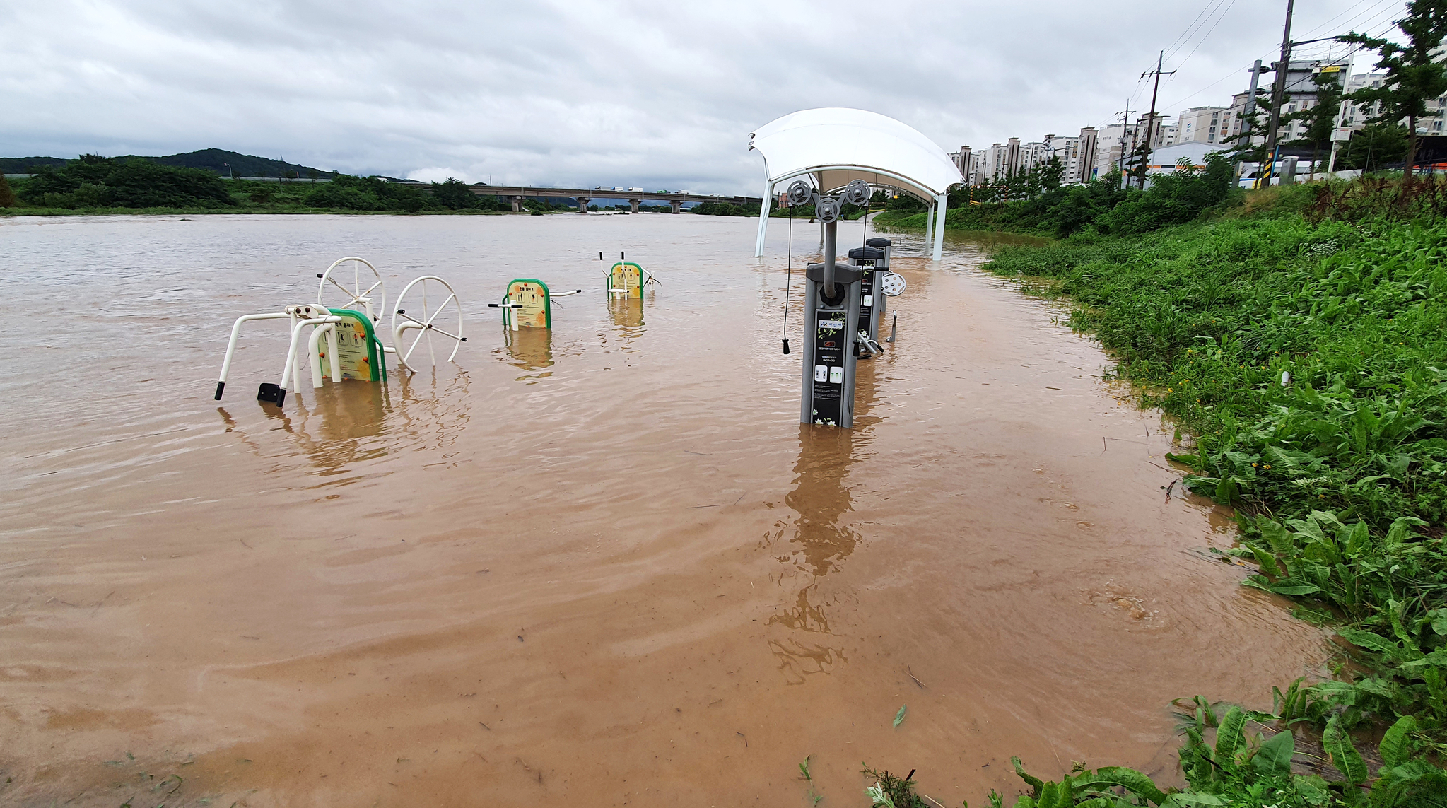 [속보] 아산서 폭우에 휩쓸려 실종됐던 50대 숨진 채 발견