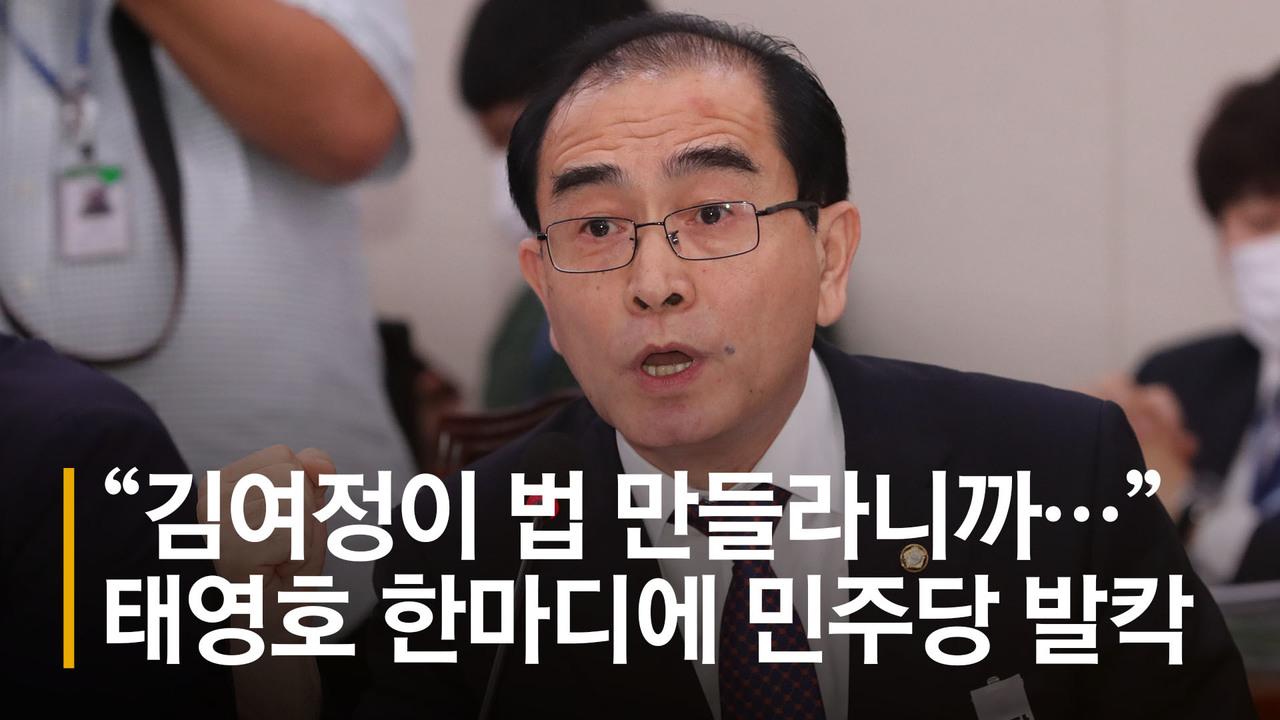 """[영상]""""김여정 지시로 법 만드나"""" 태영호 한마디에 설전 오간 여야"""