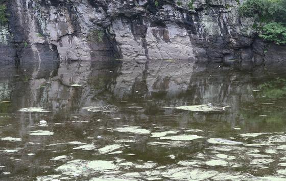 지난달 28일 오후 울산시 울주군 언양읍 대곡리 국보 제285호 반구대암각화가 최근 장마로 물에 완전히 잠겨 있다. [연합뉴스]