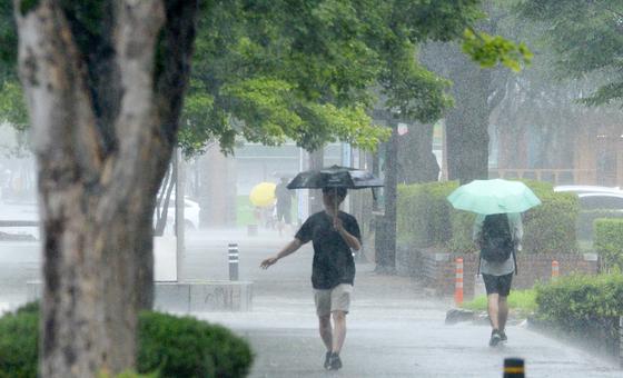 장마가 이어지고 있는 5일 전북 전주시 전북대학교에서 학생들이 우산으로 비를 피하며 교정을 지나고 있다. 뉴시스