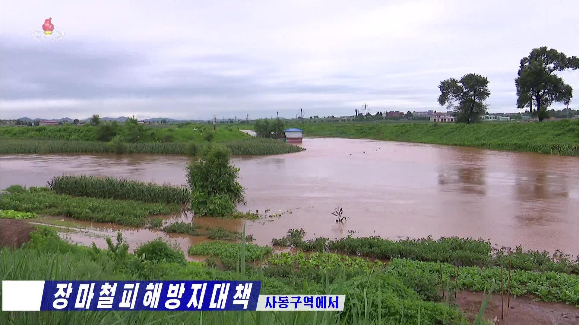 사진은 지난 6일 조선중앙TV에 보도된 북한 평양시 사동구역의 농경지 침수 피해 현장. 연합뉴스