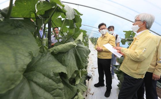 김현수 농림축산식품부 장관이 지난 3일 호우 피해를 입은 충남 논산의 시설채소 재배농가를 살펴보고 있다. 뉴스1