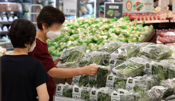 10일 서울 한 대형마트 농산물 코너에서 시민들이 채소 농산물을 둘러보고 있다. 뉴시스