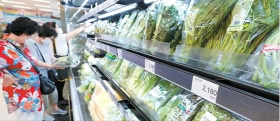 긴 장마가 지속되면서 농산물 가격 폭등이 전망되는 가운데 10일 서울 한 대형마트 농산물 코너에 채소 등이 진열돼 있다. 뉴시스