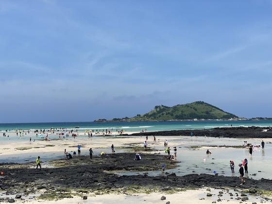 14일 낮 12시 제주시 한림읍 금능해수욕장을 찾은 피서객들이 물놀이를 즐기고 있다. 최충일 기자