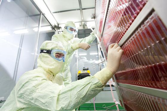 SK바이오사이언스 연구원이 안동의 백신공장인 L하우스에서 대상포진백신의 세포를 배양하기 위한 공정을 진행하고 있다. [사진 SK바이오사이언스]
