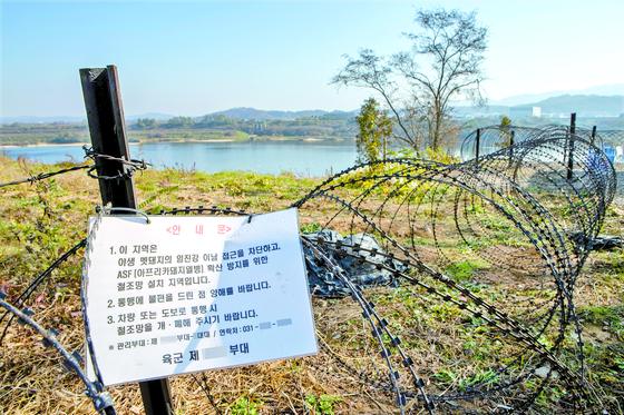 지난해 11월 경기도 연천 임진강변에 아프리카돼지열병(ASF) 확산 방지와 야생 멧돼지 이동을 막기 위한 철조망이 설치돼 있다. 연합뉴스