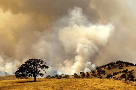 16 일 캘리포니아 콘트라 코스타 카운티에서 산불이 발생하여 연기가났습니다. [AP=연합뉴스]