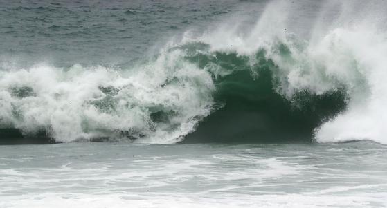 1일 오후 제 9호 태풍 마이삭의 간접 영향권에 든 제주도 서귀포시 표선리 앞바다에 거센 파도가 치고 있다. 뉴스1