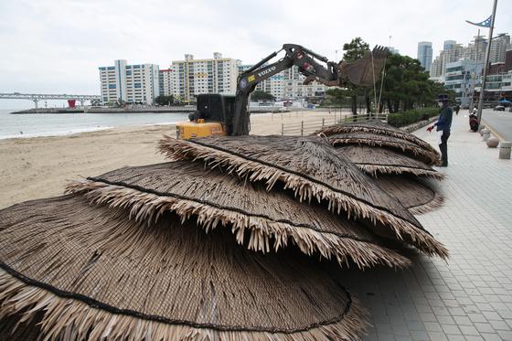 제9호 태풍 마이삭(MAYSAK)이 북상 중인 1일 오전 부산 광안리해수욕장에 설치된 파라솔이 철거되고 있다. 뉴스1