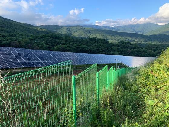 경북 봉화군 물야면 오전리에 설치된 태양광 발전 시설. 지난해 과수원과 소나무 군락 자리에 들어섰다. 양인성 인턴기자