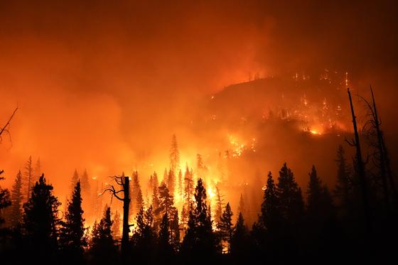 6일(현지시간) 미국 캘리포니아주 시에라 국립 삼림에 번진 불길이 사그러들 기미를 보이지 않고 있다. [AP=연합뉴스]