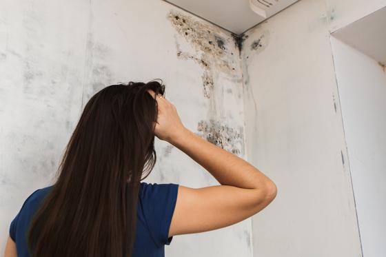 아파트 누수 사고는 보수에 돈과 시간이 많이 들어 골치 아프다. 셔터스톡