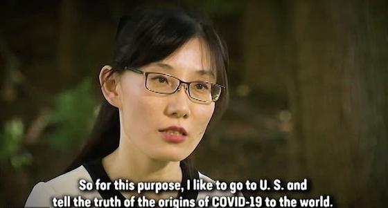 옌 리멍 박사. 폭스 뉴스 화면