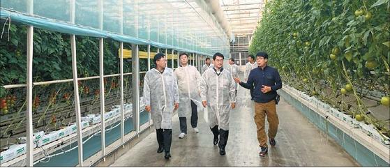 국립농산물품질관리원 노수현 원장이 지난해 11월 농업회사법인 ㈜동부팜의 GAP인증 및 관리시설을 둘러보고 있다. [사진 국립농산물품질관리원]
