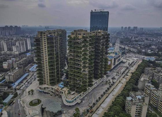 중국 청두에서 '녹색 주택'을 표방한 아파트가 들어섰으나 모기가 들끓는 바람에 800여 세대에서 이제는 10여세대만 남게 됐다. 식물을 건사할 사람이 없어서 방치된 채 남겨진 아파트 모습. [자유시보]