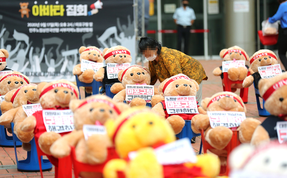 사람 대신 곰 인형 집회