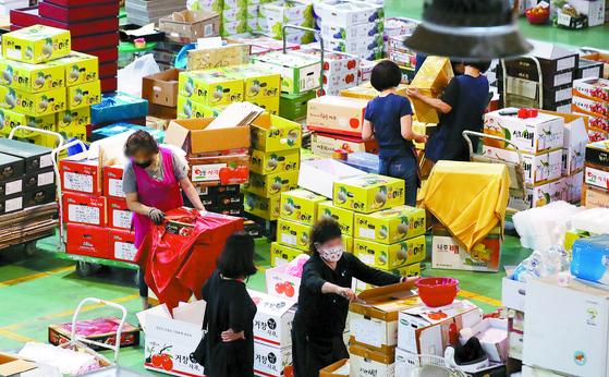 [사진] 추석 선물 포장 분주한 청과시장