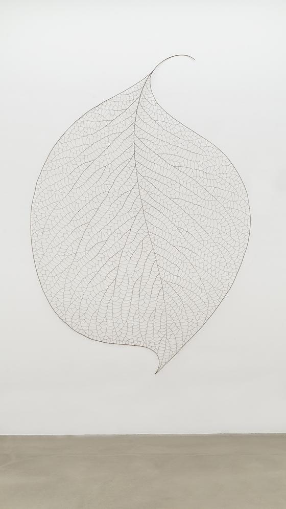 정광호, The Leaf 10580, 2010, Copper Wire, 180x270x10cm. [사진 조현화랑]