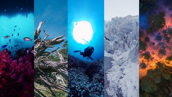 기후재앙 눈앞에 보다 시리즈. 왼쪽부터 제주 바다, 한라산, 호주 그레이트배리어리프, 그린란드, 시베리아. 로이터=연합뉴스