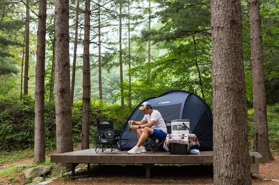 올해 코로나19로 캠핑족이 늘었다. 산림청이 캠핑 특화 휴양림으로 만든 청옥산 자연휴양림. 최승표 기자