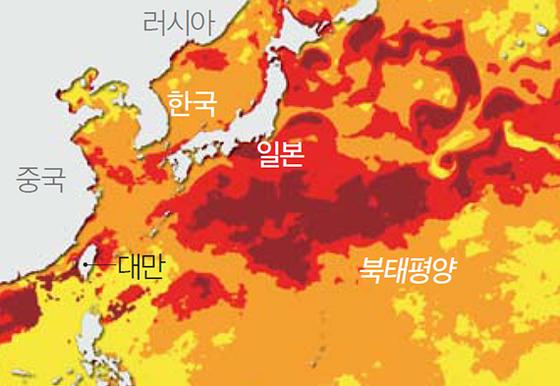 미국 해양대기청(NOAA)의 산호 백화 경고 현황. 짙은 붉은색이 가장 높은 단계의 백화 위협을 나타낸다. 대만 근해와 일본, 북태평양 일대에 가장 높은 경보가 발령됐다. [사진 NOAA]