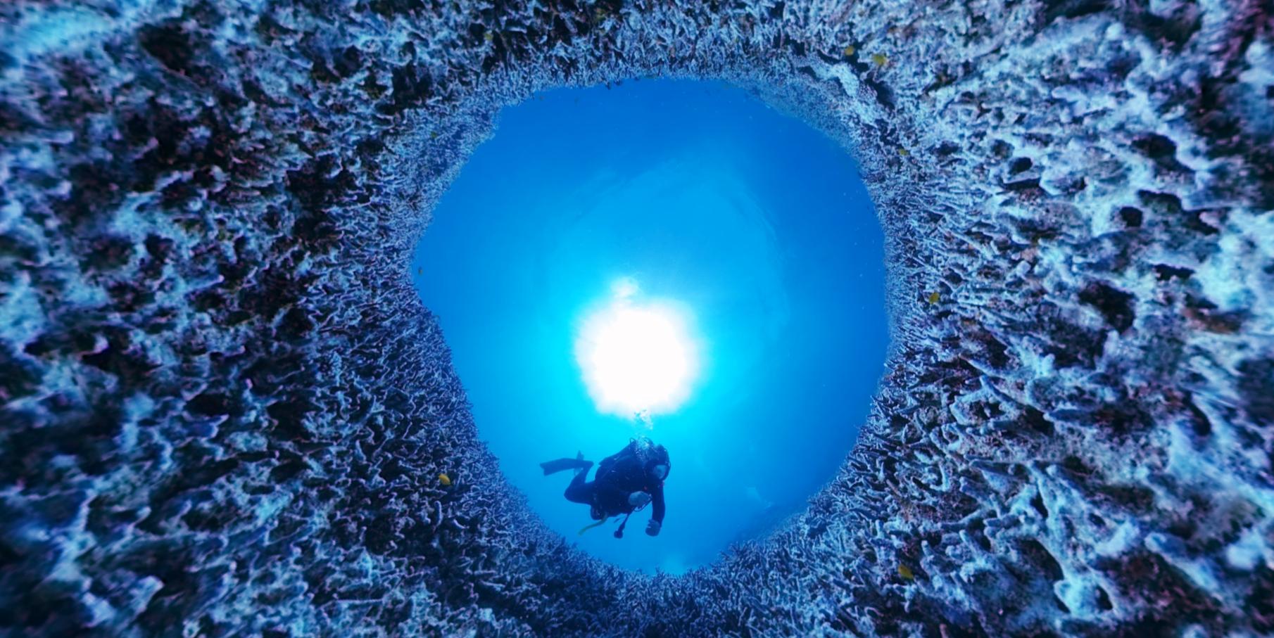지난달 23일 촬영한 호주 북동부 바다에 있는 세계 최대 산호초 '그레이트배리어리프'. 백화 현상을 앓아 색을 잃은 산호를 360도 VR카메라에 담았다. 사진 리처드 피츠패트릭