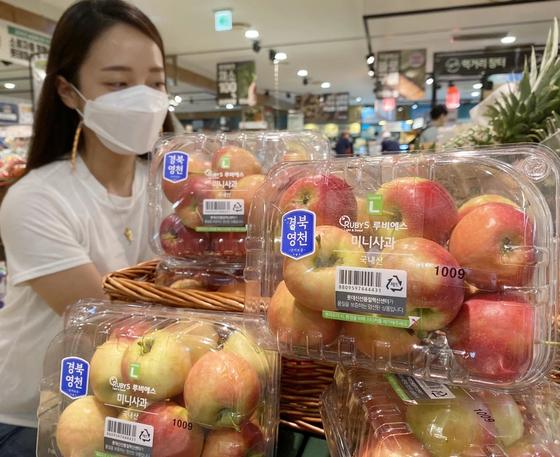 소비자가 국산 품종인 루비에스 미니 사과를 살펴보고 있다. 사진 롯데마트