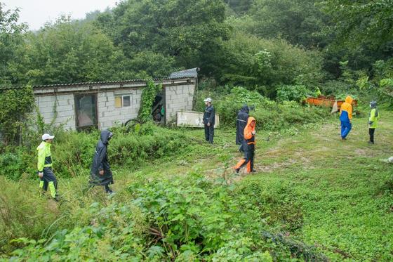 지난 10일 강원 고성군에서 버섯을 채취하러 나갔다가 실종된 90대 할머니를 찾기 위해 경찰과 소방당국이 수색작업을 하고 있는 모습.[사진 고성군]