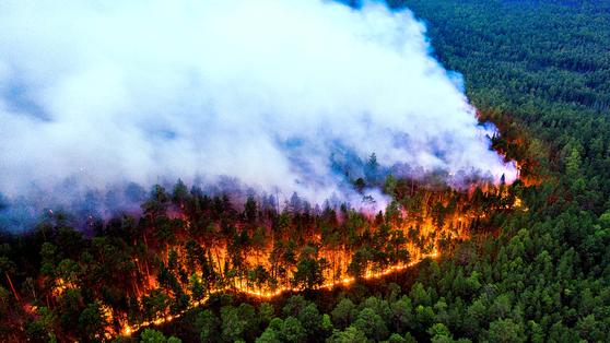 7월 17일 러시아 크라스노야르스크 지역의 숲이 불타면서 희뿌연 연기를 뿜고 있다. 올여름 기후변화로 인한 폭염이 찾아오면서 시베리아 전체가 화재로 몸살을 앓았다. 로이터=연합뉴스