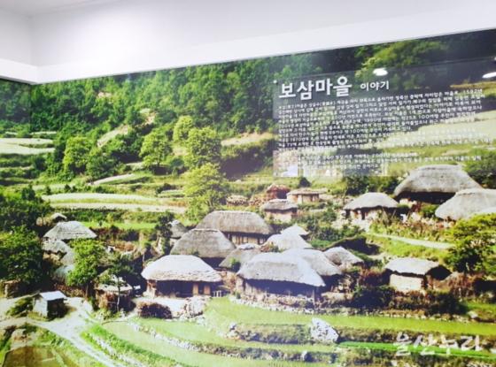 울산 울주군의 보삼마을의 과거 모습. 영화의 고향 보삼마을은 억새 지붕 초가집 군락으로 유명했다. [사진 울주군]