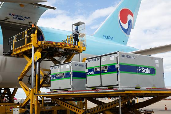 온도조절이 가능한 특수 컨테이너가 대한항공 화물기에 탑재되고 있는 모습. 사진 대한항공