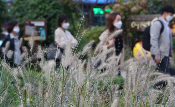 아침 기온이 10도 선을 맴도는 쌀쌀한 날씨를 보인 지난 12일 서울 청계광장에서 두툼한 옷차림의 시민들이 발걸음을 재촉하고 있다. 뉴스1