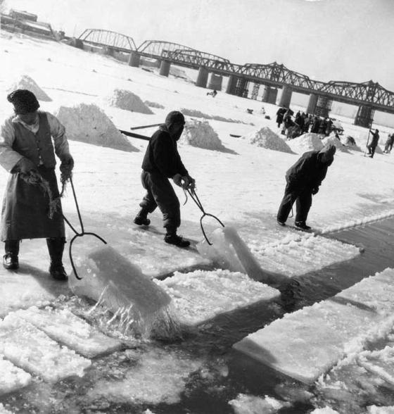 1957년 한강 채빙작업 모습. [사진 한국정책방송원 e영상역사관]
