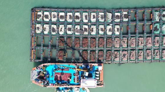 지난 8일 전남 완도군의 한 전복 양식장에서 어민들이 전복을 선별하고 있다. 완도 전복은 지난 8~9월 2차례 태풍의 여파로 전복이 집단 폐사하면서 명절 때 가격이 폭등했다. 프리랜서 장정필