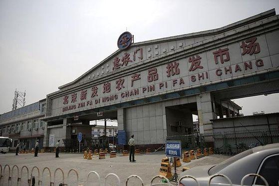지난 6월 베이징을 강타한 코로나 사태는 베이징 남부 펑타이구에 자리한 신파디 농수산물 도매시장에서 시작됐다. 당시엔 수입 연어가 의심을 받았다. [중국 신경보망 캡처]