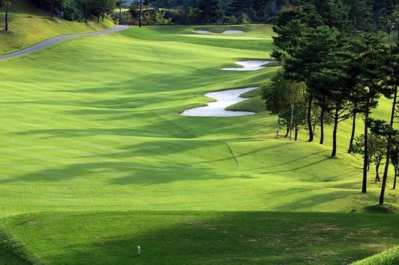 코로나19가 장기화하면서 국내 골프장을 찾는 수요가 늘고 있다. 국내 한 골프장 모습. [중앙포토]