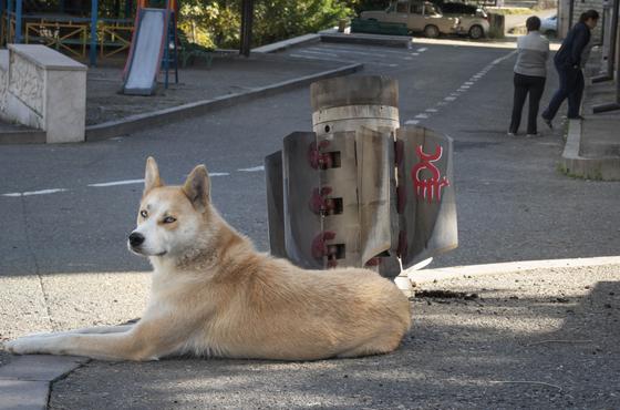 캅카스 지역 나고르노카라바흐의 중심지 스테파나케르트의 민간인 거주지에 떨어진 아제르바이잔 로켓포의 잔해 앞을 개가 지키고 있다. AP=연합뉴스