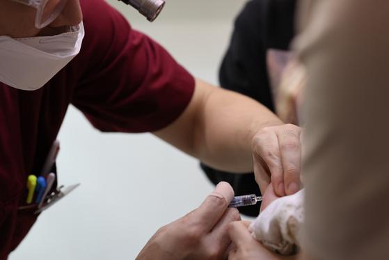 """인플루엔자(독감) 예방 접종을 한 뒤 사망하는 사례가 이어지며 보건 당국이 조사에 나선 가운데 질병관리청은 '사망 사례와 독감 예방접종과의 인과관계는 아직 확인되지 않았다""""는 입장을 밝혔다. 연합뉴스"""