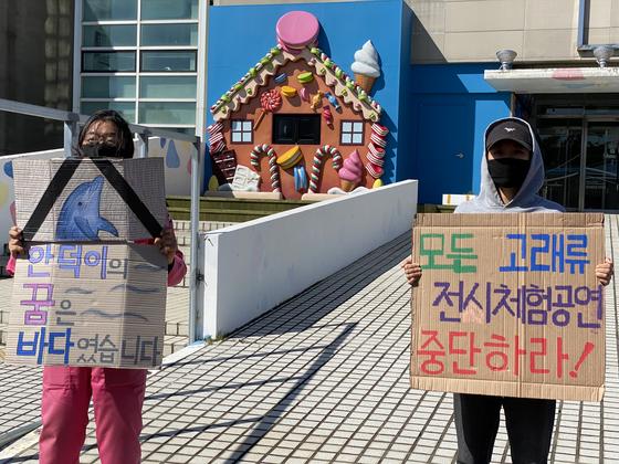 돌고래보호단체 가 지난 13일 제주 모 테마파크 앞에서 시위를 하고 있다. [사진 핫핑크돌핀스]
