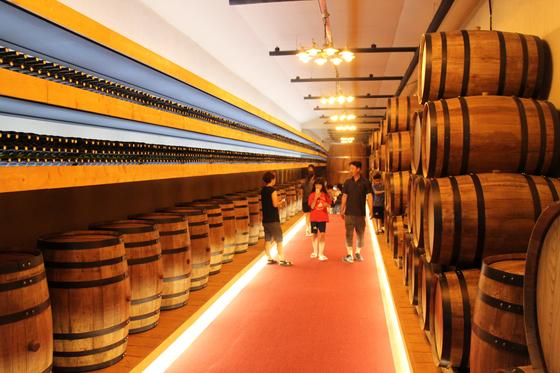 충북 영동읍 매천리에 있는 와인터널은 와인의 역사를 보여주는 전시관뿐만 아니라 시음, 체험, 판매장 등이 마련돼 있다. [사진 영동군]