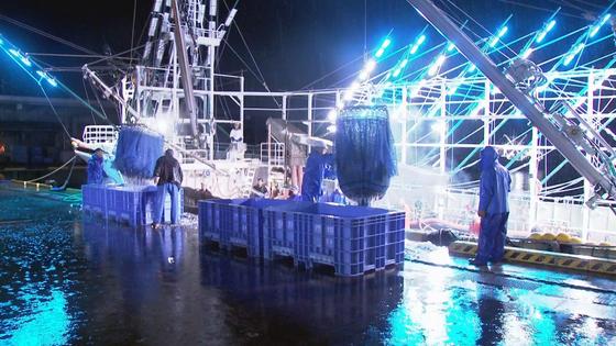 지난 23 일 오전 5시 미야기 현오나가와 항에서 꽁치 어선 하역 작업을하고있다. JTBC 바쿠산욘 기자