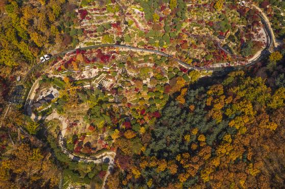 단풍 절정 맞은 곤지암 화담숲. 12월 초까지만 개장하고 겨우내 문을 닫는다. 가을에만 여는 '숲 트레킹 코스'는 11월 8일까지만 탐방객을 받는다. [사진 곤지암리조트]